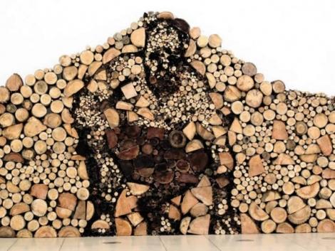 12 curiozitati despre lemn – starea si utilizarea resurselor forestiere