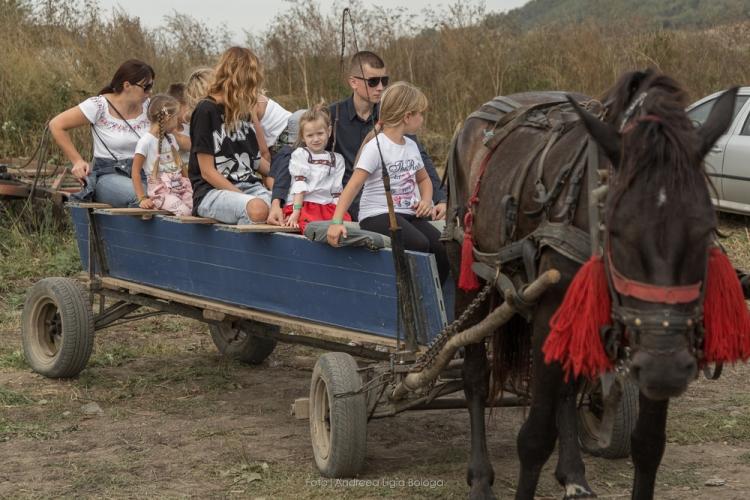 Evadeaza din oras si reconecteaza-te la natura: Festivalul Silvoitei aduce cele mai bune gusturi si distractie pentru toata familia