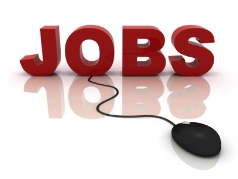 Alege JOB-ul perfect: top 3 din diferite domenii