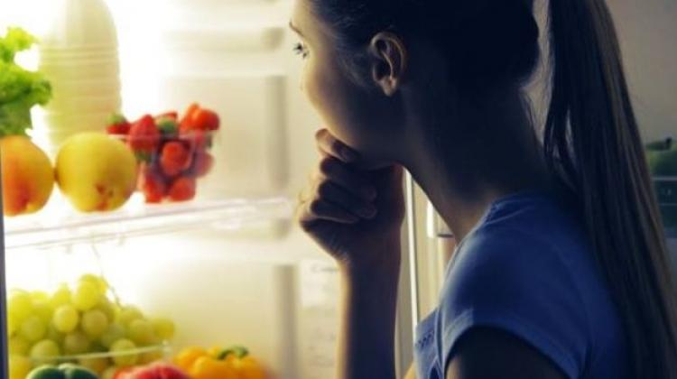 Cum alegi cel mai bun frigider?