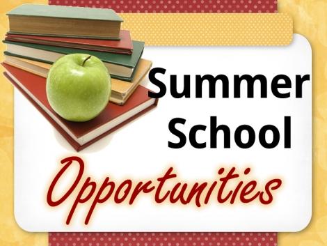 Universitatea de Stiinte Aplicate de la Haga te invita sa aplici pentru scoala de vara!