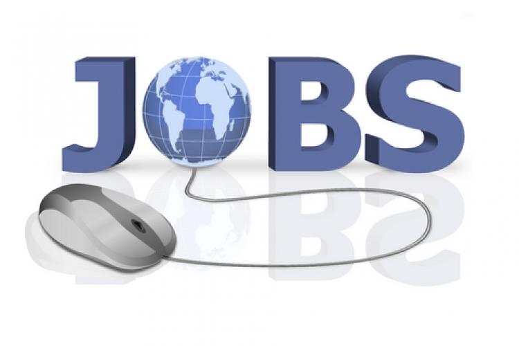 Cum sa aplici online pentru un job