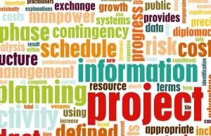 Curs de Project Management pentru studentii Facultatii De Mate-Info a UBB'ului