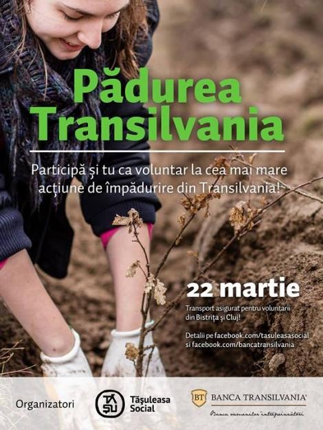 Participa si tu ca voluntar la cea mai mare actiune de impadurire din Transilvania!!
