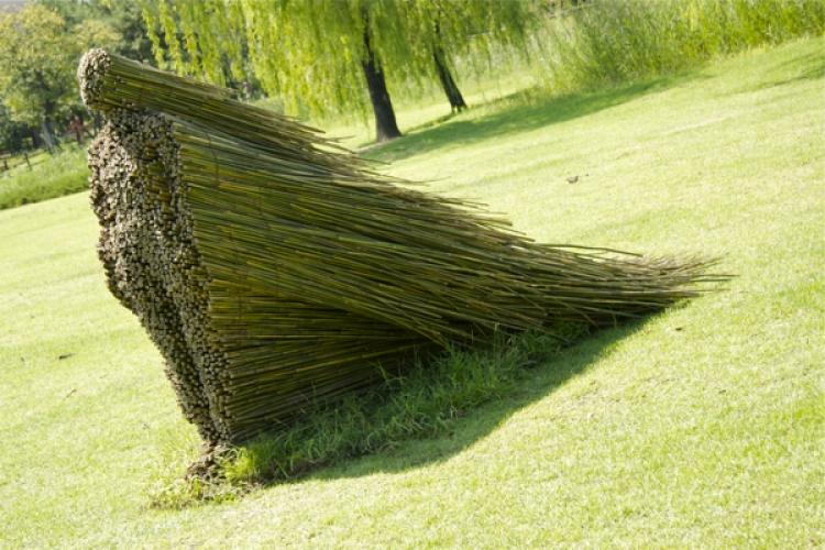 O sculptura din lemn masiv reciclat isi va face loc in Parcul Central