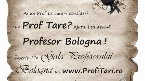 Cautarea Profesorului Bologna pentru anul 2014 a inceput!