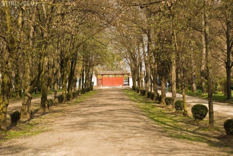 """Peste 100 de voluntari in campania de ecologizare a Parcului Sportiv Universitar """"Prof. dr. Iuliu Hatieganu"""""""