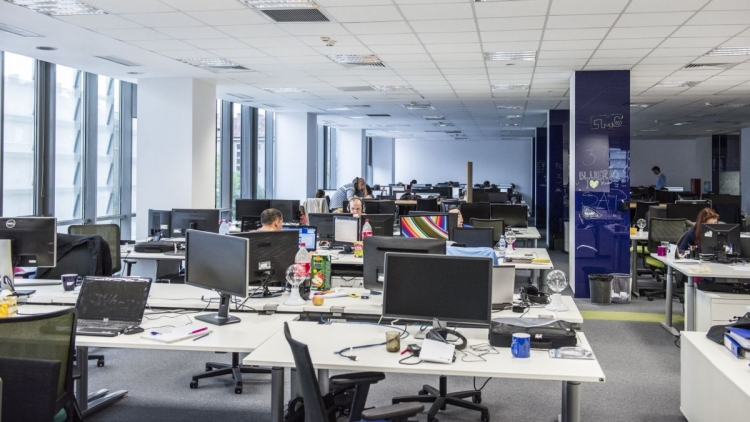 12 companii clujene isi deschid portile pentru studenti
