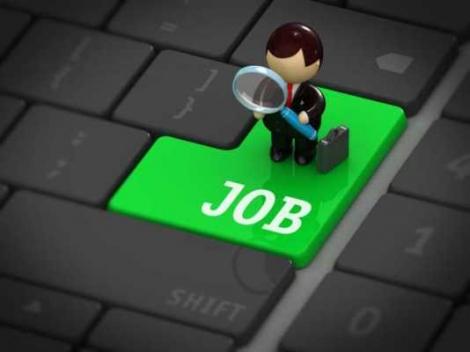 Cele mai multe sanse de angajare sunt in zona de Nord-Vest