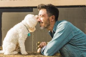 Cum ne hrănim corect animalul de companie?