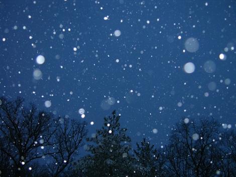 De ce iarna este absolut cel mai oribil anotimp (7 motive + gifs)
