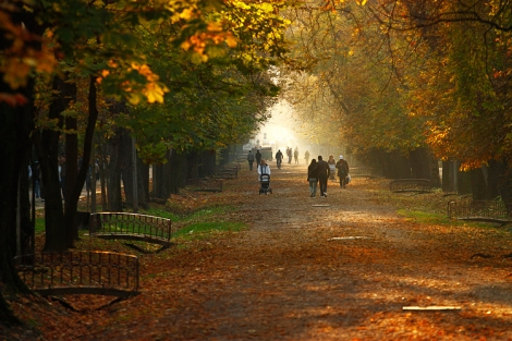 Unde ne plimbam in Cluj? Top 3 locuri pentru o plimbare reusita