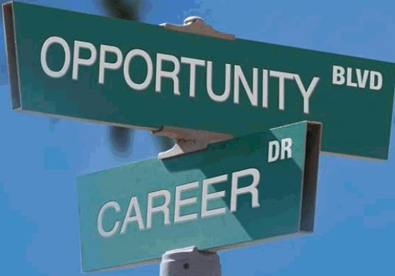7 joburi de viitor pentru absolventi