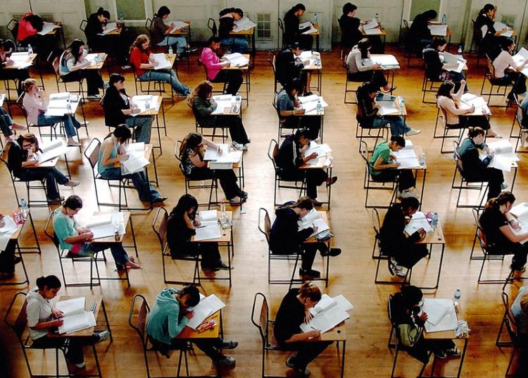 Finlanda e pregatita sa renunte la predarea matematicii si a chimiei