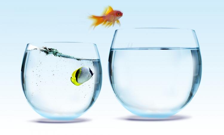 Domeniul in care lucrezi este important pentru frecventa cu care iti vei schimba jobul